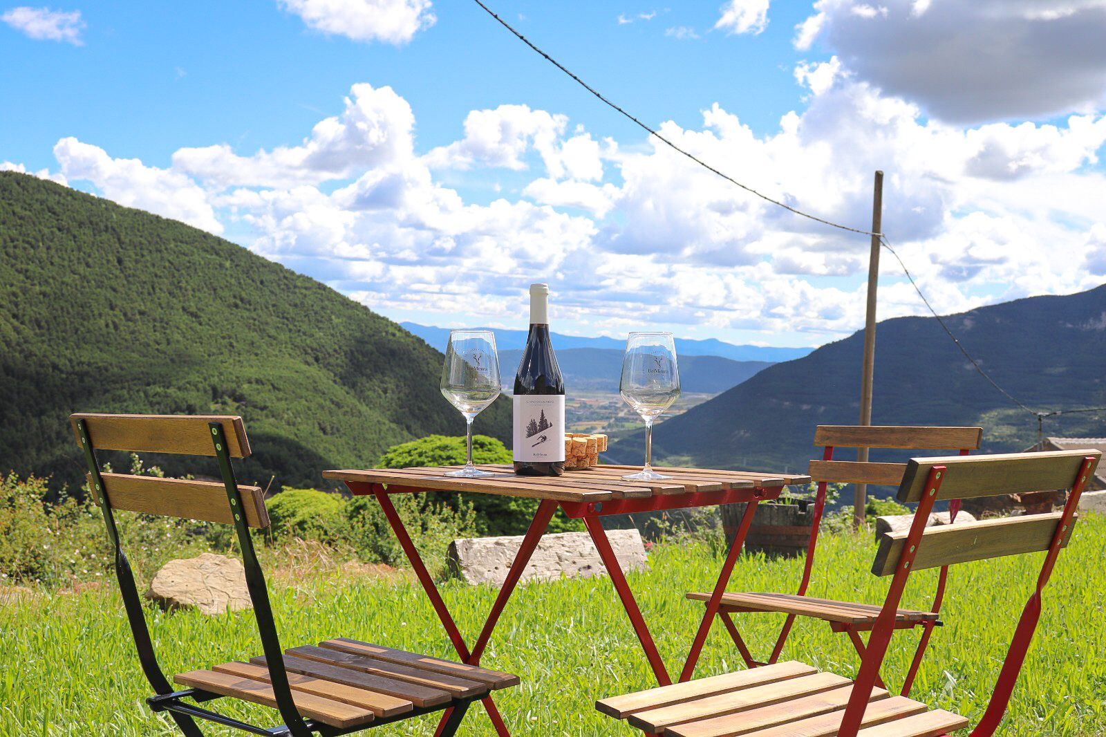 Visita bodega Pirineo